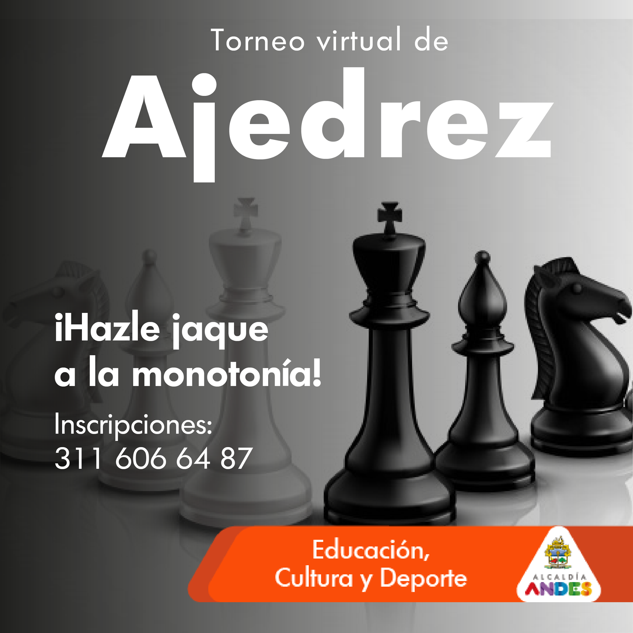 Torneo Virtual de Ajedrez